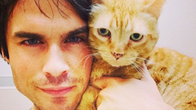 Find_Out_Who_Ian_Somerholder_Wants_You_to_Adopt_.jpg